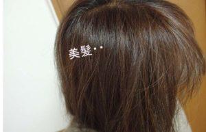 白髪染めトリートメント 美髪