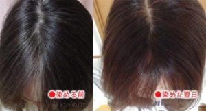 ルプルプのブラウン染めた色の変化